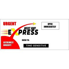 "#10 Peel-n-Seal Next Day Express Envelopes (4.125"" x 9.5"")"