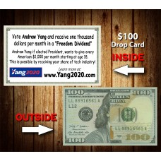 Andrew Yang $100 Drop Cards